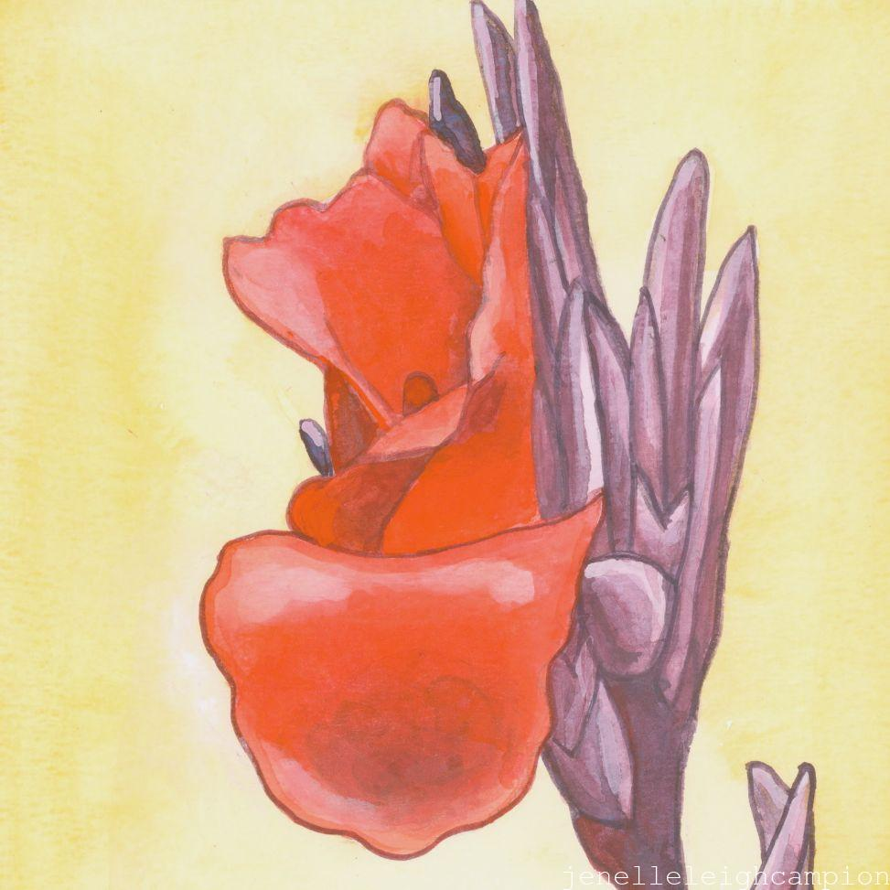 Canna (Flower, Blossom) on Gouache on Paper by New Orleans Jackson Square Artist, Jenelle Leigh Campion MFA @jenelleleighc