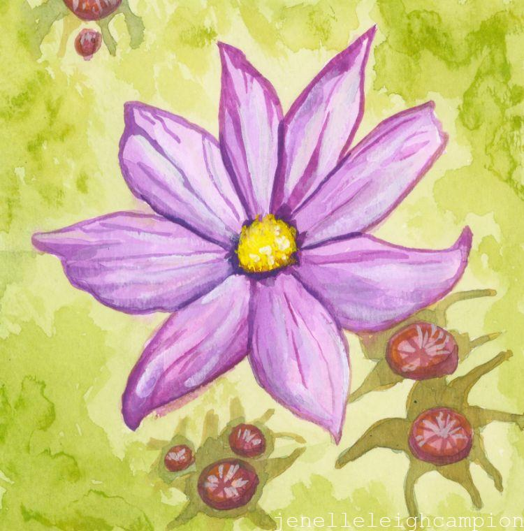 Cosmos (Flower, Blossom) on Gouache on Paper by New Orleans Jackson Square Artist, Jenelle Leigh Campion MFA @jenelleleighc