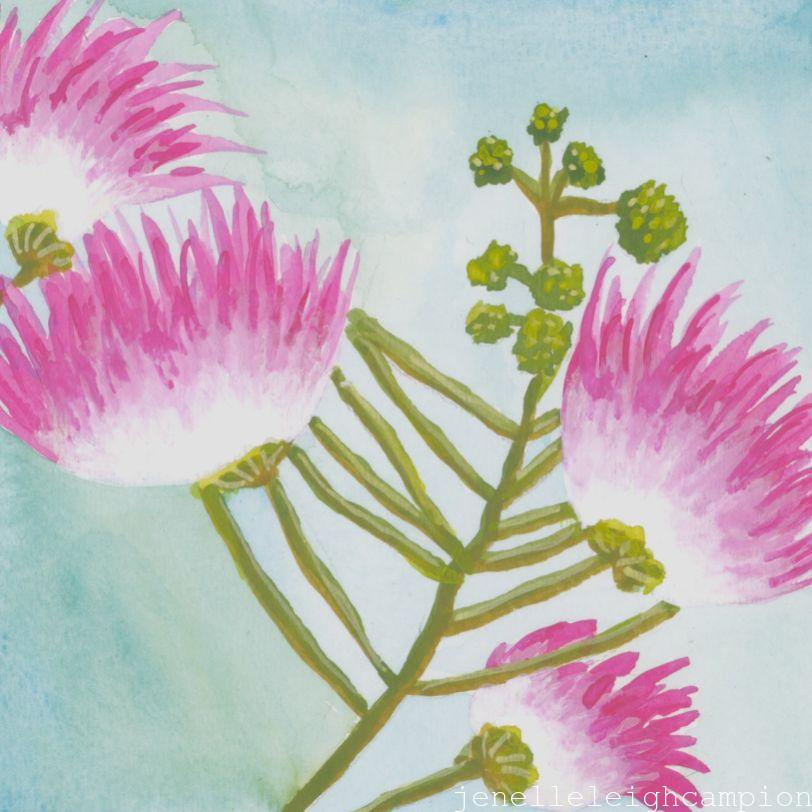 Mimosa (Flower, Blossom) on Gouache on Paper by New Orleans Jackson Square Artist, Jenelle Leigh Campion MFA @jenelleleighc