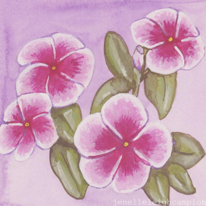Periwinkle (Flower, Blossom) on Gouache on Paper by New Orleans Jackson Square Artist, Jenelle Leigh Campion MFA @jenelleleighc
