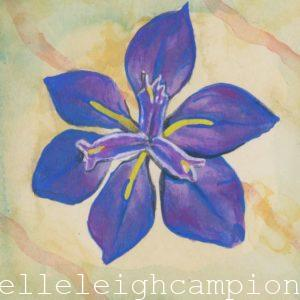 Purple Iris (Flower, Blossom) on Gouache on Paper by New Orleans Jackson Square Artist, Jenelle Leigh Campion MFA @jenelleleighc