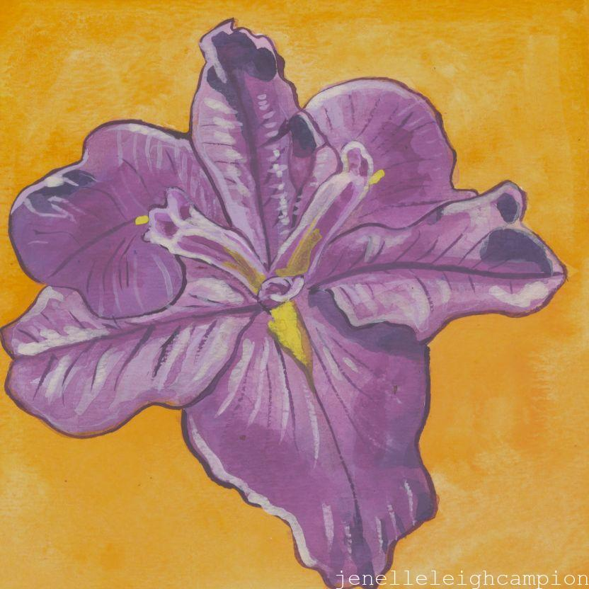 Purple Iris 2 (Flower, Blossom) on Gouache on Paper by New Orleans Jackson Square Artist, Jenelle Leigh Campion MFA @jenelleleighc